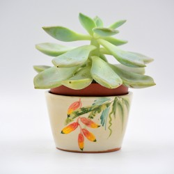 Ghiveci mască ceramică - Plantă exotică, 11 X 8  cm